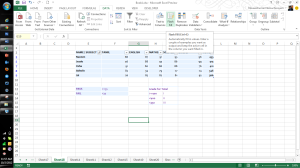Microsoft Excel 2013 Features Flash Fill