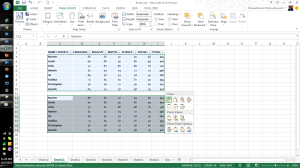 Microsoft Excel 2013 Features Paste