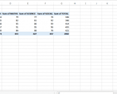 Pivot Table in MS Excel 2013